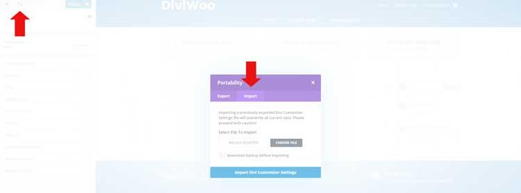 DiviWoo Theme Customizer
